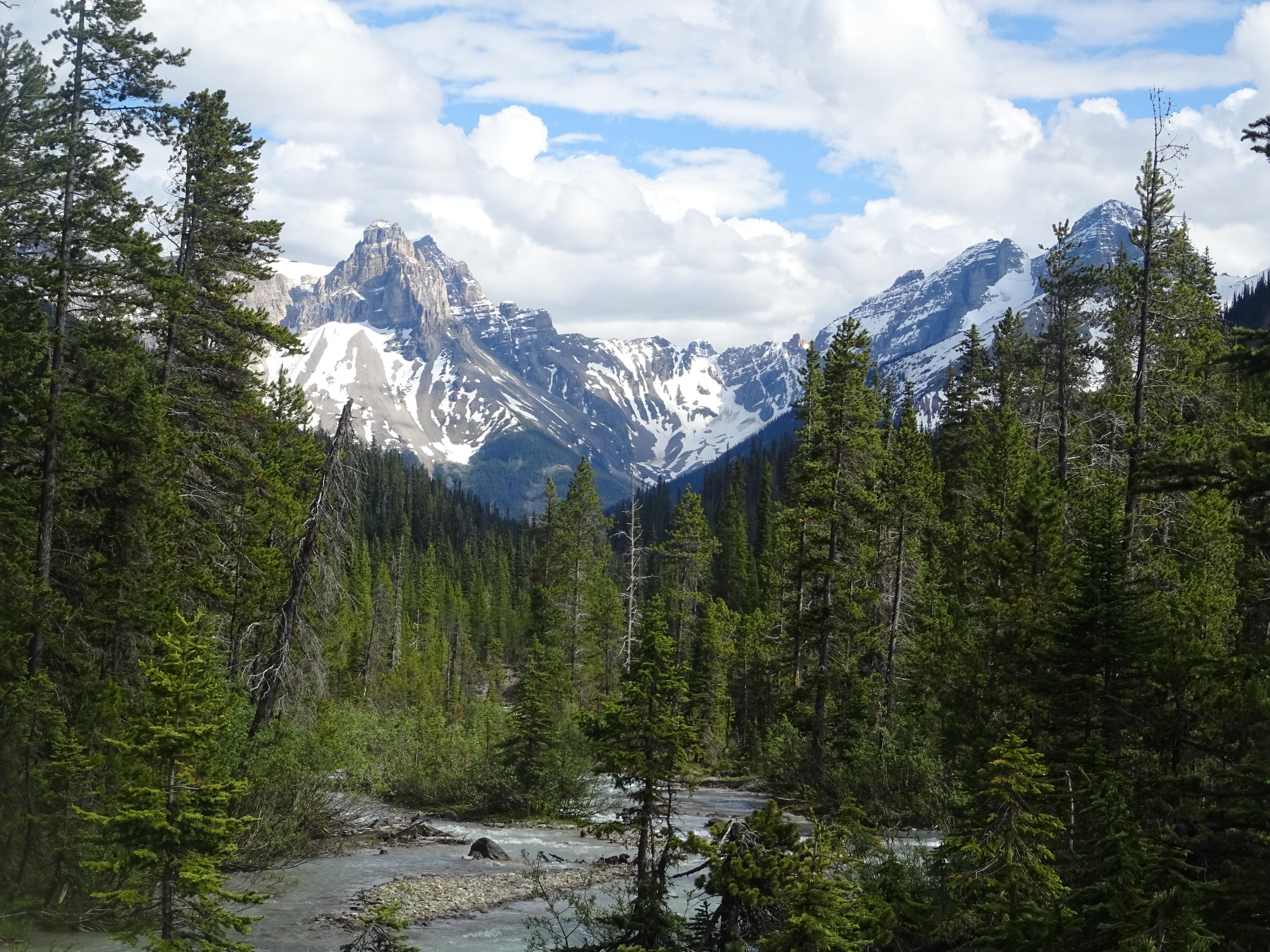 Parc national de Yoho, Alberta, Canada