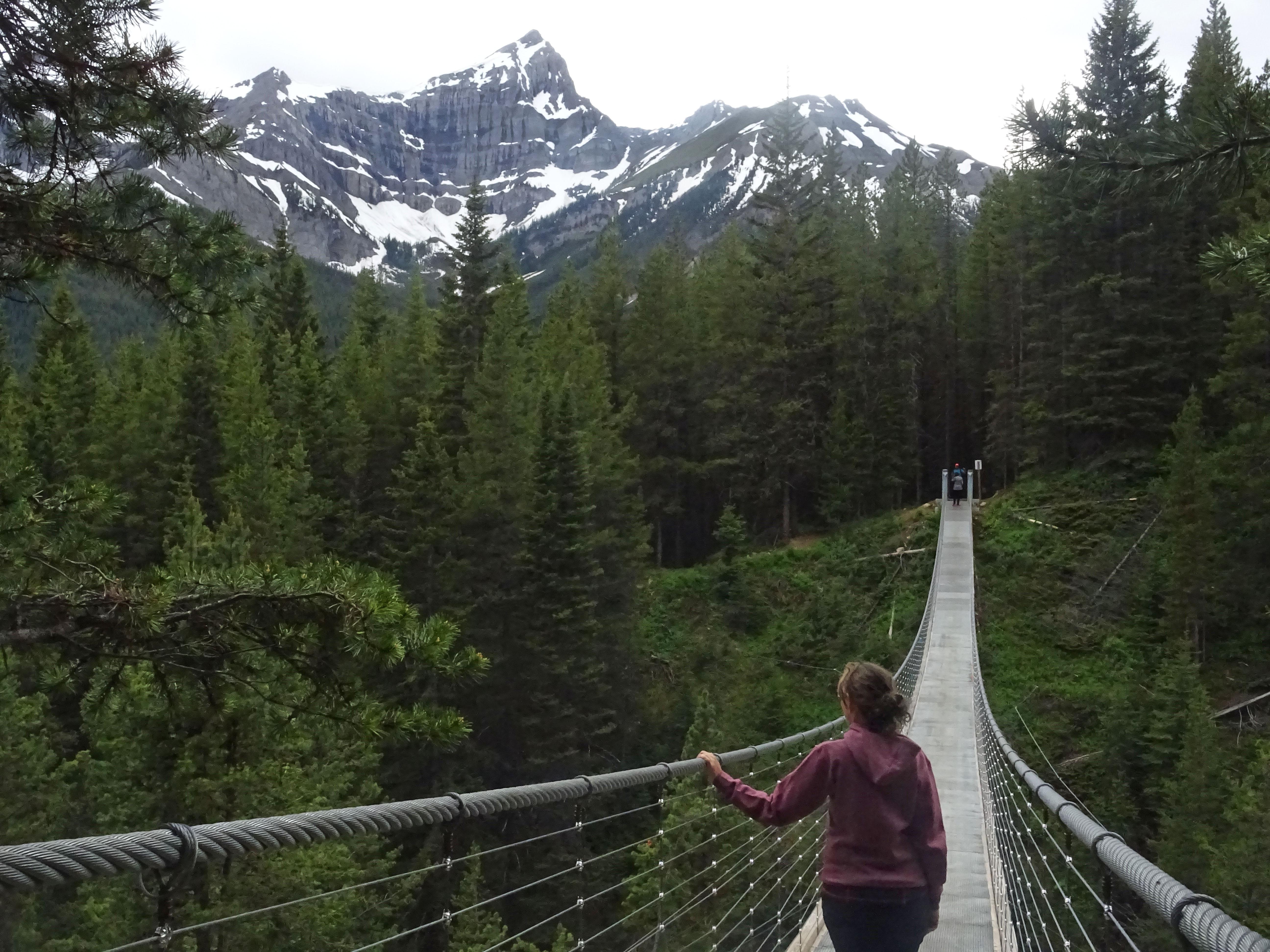Pont suspendu Blackshale, Kananaskis, Alberta, Canada